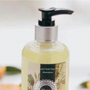 Dầu gội Trị rụng tóc Tinh dầu Citrus Om Fountain
